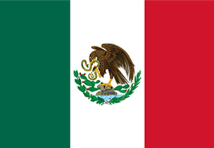 Bandera Mexico copia